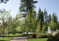 Foxwood Lake Almanor