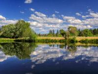 Fishing Lake Almanor
